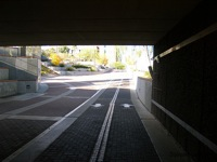 UA Bike Path